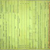 美国开车罚单 Traffic Ticket